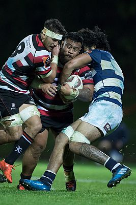 PIC Counties Manukau show plenty of Steel