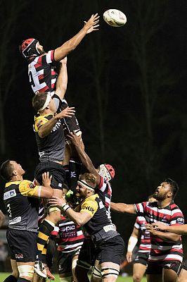 Impressive play earns first starts for PIC Counties Manukau Steelers pair